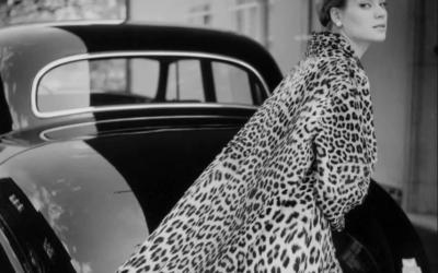 Леопард не сдается. Советы стилиста